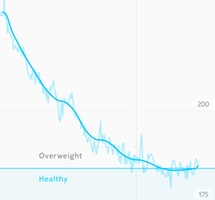 Weight loss over time